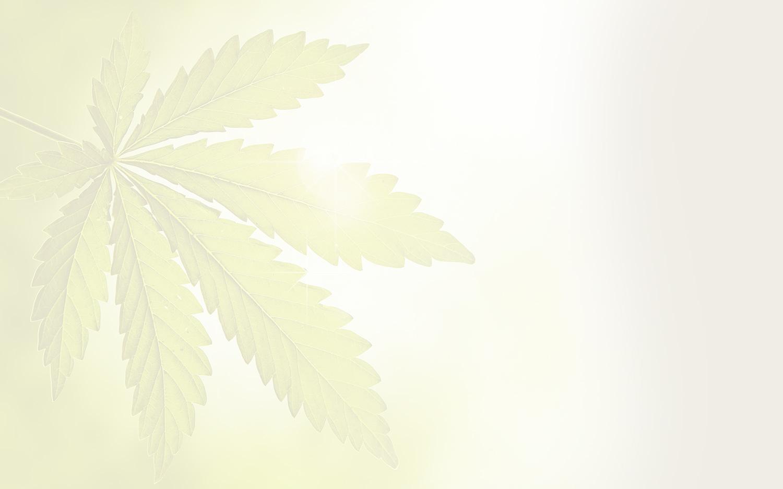 cannabis leaf image